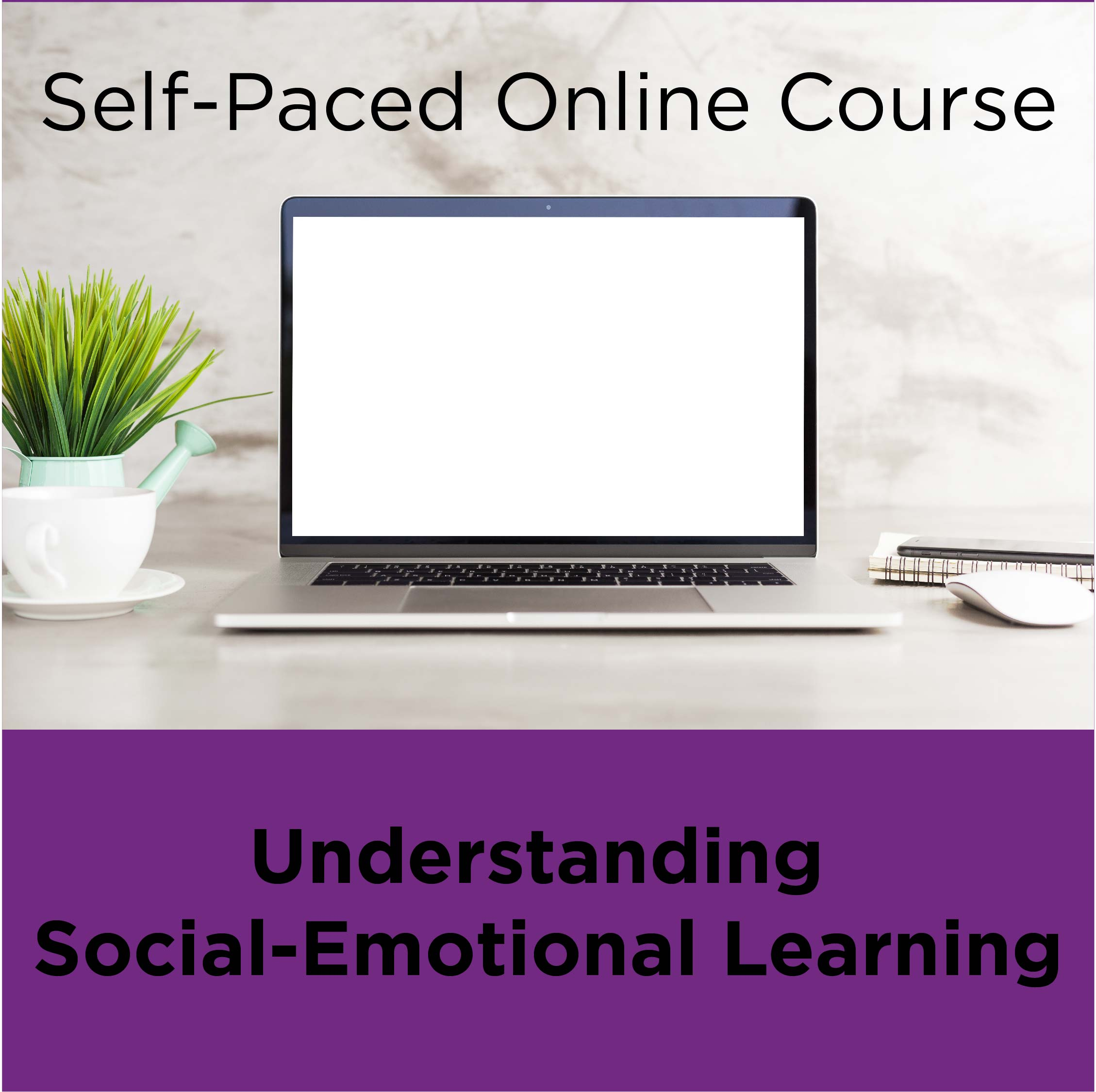Understanding Social Emotional Learning